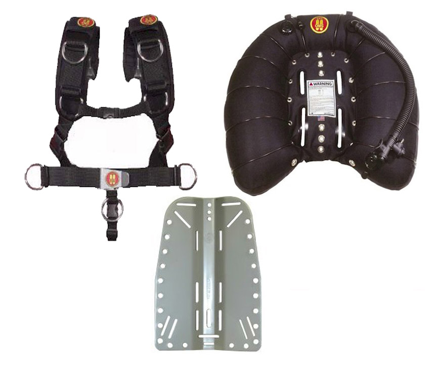 45lb SINGLE WING + COMFORT HARNESS + ALI B/PLATE