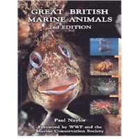 DR PAUL NAYLOR - GREAT BRITISH MARINE ANIMALS